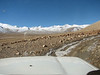 Jeeptour on the Tibetian plateau >4000m