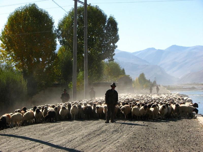 (near Lhasa)