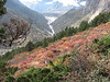 autumn landscape (Kangchungtrek)
