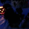 Dierdre admires the pumpkin light~