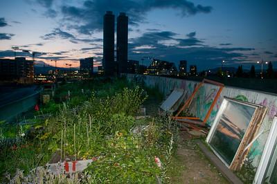 Komunitní zahrada v Oslu