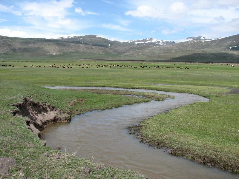 landscape on the route Artvin-Ardahan-Kars (North East Turkey spring 2007)