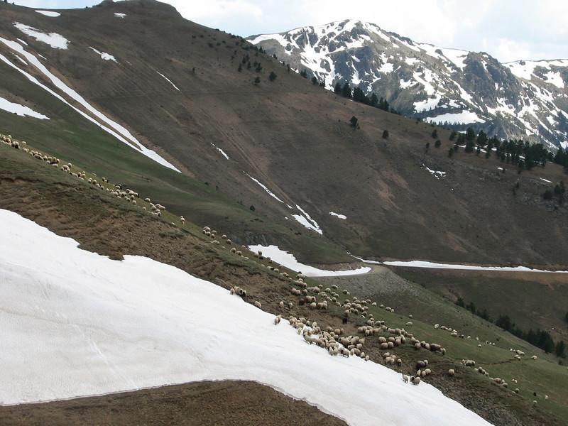 Palandoken mountains (North East Turkey spring 2007)
