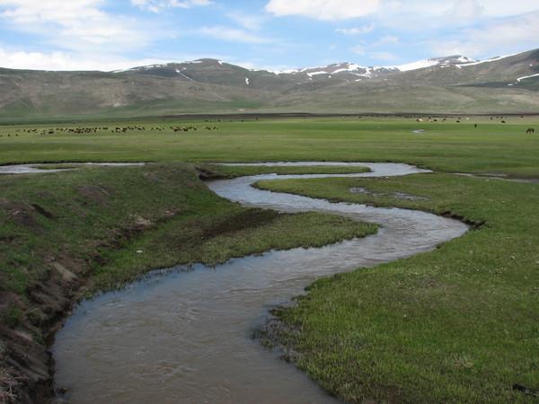 Artvin-Ardahan-Kars (North East Turkey spring 2007)