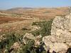 Landscape South Anatolia (Hassa - Gazi Antep)
