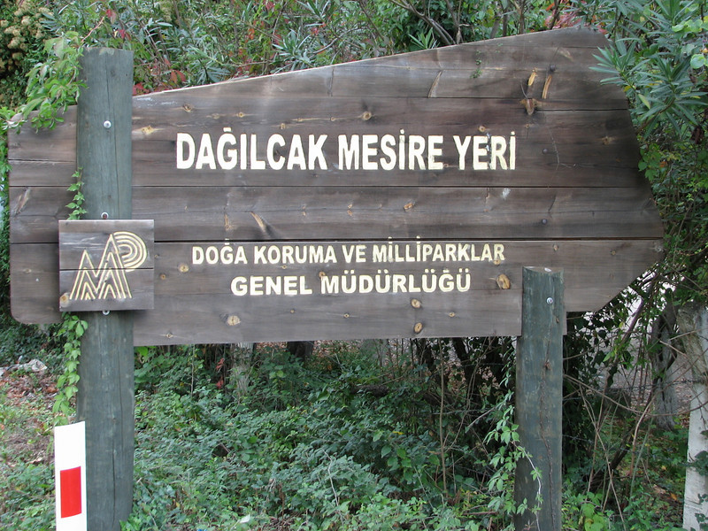 National Parc (Duzici - Kozan)