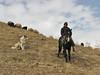 Kurdish shepherd, ([Iran] Esendere -Yüksekova) 1600m[14a]