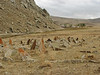 Cemetery near village Yeniköy, South of Askale (Askale- Ciftlik) West Palendoken mountains