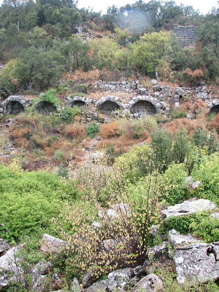 archeologic site Termessos near Antalya (Southwestern Turkey)
