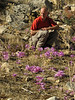 Marijn and Colchicum sanguicolle (dirt road west of Yesilbarak, Akdaglari, SW Turkey)