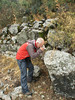 Marijn, photographing Colchicum baytopiorum (Termessos, SW Turkey)