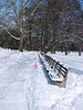 Central Park benches after the blizzard of 2005. Not much of a blizzard by Ottawa standards.