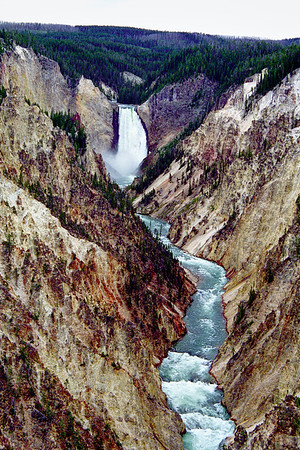 My last few visits to the Yellowstone canyon have been plagued with rainy weather. I didn't get a decent shot of the falls this September (2019) so I looked back through my slide scans and found this shot I took in the summer of 2000. It was another overcast day but at least it wasn't raining. Earthquakes have damaged some of the canyon viewpoints in the last twenty years; I'm not sure if this viewpoint is one of them.