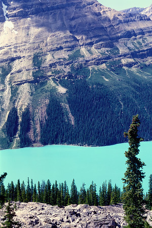 The glacial fines suspended in Jasper lakes imparts a lovely greenish sheen.