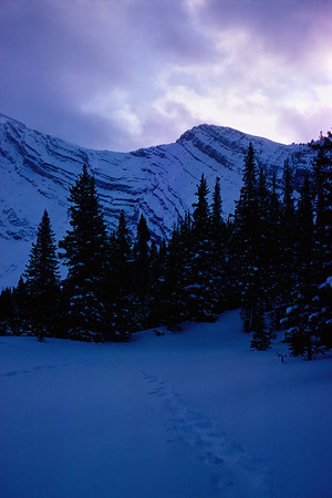Gathering dusk on Cascade Mountain above Banff. In December of 1974, I snowshoed up the Cascade Trail near Banff Alberta with my good friend Richard Moore. It was quite cold-below -25C. We both used two cheap sleeping bags to camp in a deep snowdrift. Snow camping is actually quite comfortable. You can pack the snow to suit your body; it's an excellent natural mattress. This hike was among the last things I did with Richard. In six months I was in Ghana and a few months later Richard committed suicide. He fired a shotgun into his head.