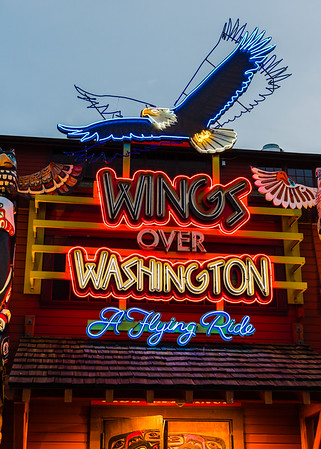 My shiny object affliction extends to neon signs.