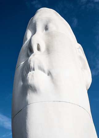 A gigantic white head in Seattle's Olympic Sculpture Park.