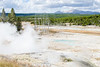 Norris Porcelain Geyser basin in Yellowstone.