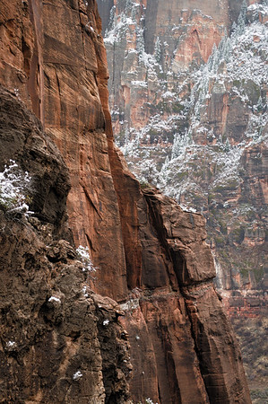 "The name of Zion in the Paiute language translates to ""straight-up land"" and many of the cliffs are exactly that."