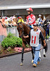 Eleven is off to the races.  I love the expression on the jockey's face. Either he has his game face on or he is scoping out a hot babe in the crowd.