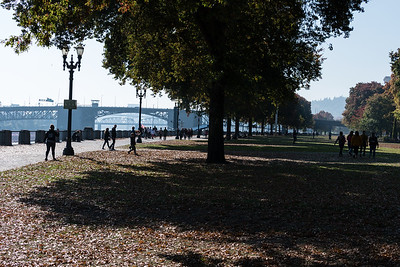 Portland Willamette River waterfront park.