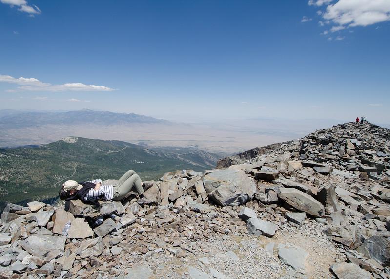 Summit slumber. Mali taking a nap on Wheeler summit.