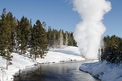 Riverside Geyser. I had never seen this geyser erupt. It put on a fine show.