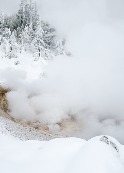 I knew the steam from Yellowstone's thermal features would be more dramatic in winter but it's how condensing steam coats surrounding trees that really delighted me.