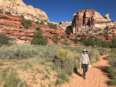 Mali on the Lower Calf Creek Falls Trail. This is a popular hike and it's easy to see why.