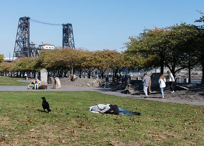 A Crow walking near a man sleeping in a Portland park.