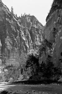 Zion Canyon (20090510_PX1_5675-B1)