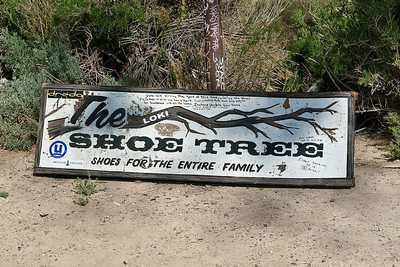 Shoe Tree Near Middlegate, Nevada (20090509_PX1_5554-C1)