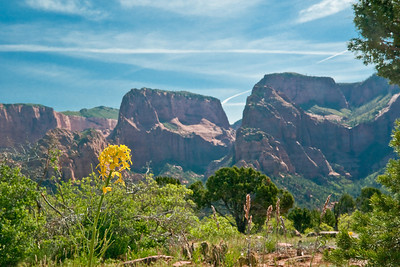 A couple of final views of Kolob Canyon. (20090510_PX1_5622-A1)
