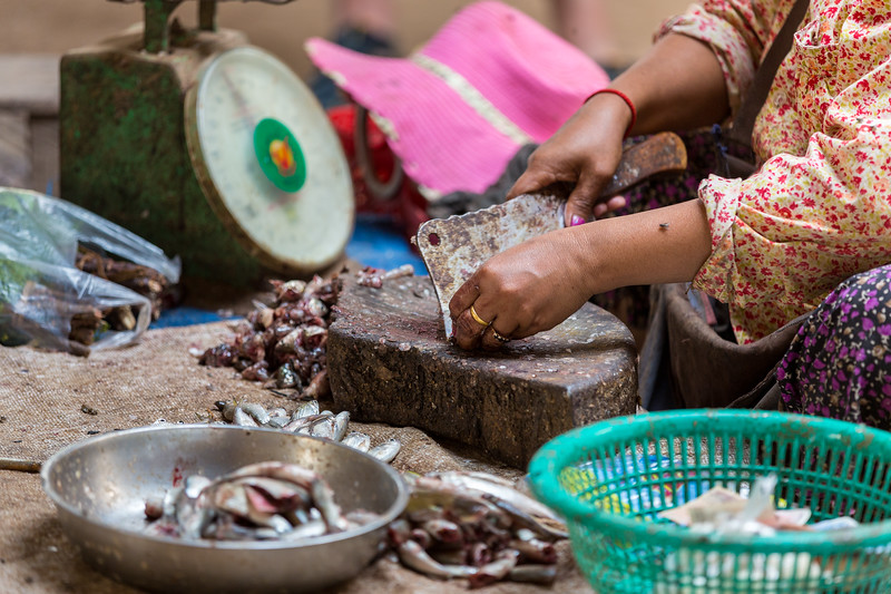 Chopping up today's fresh catch from the Mekong River.
