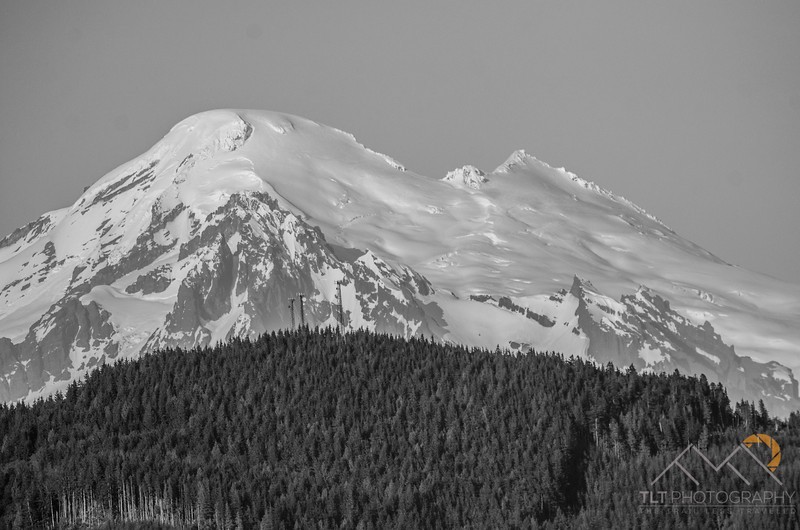 Mount Baker from the top of Chuckanut Mountain in Larrabee State Park.