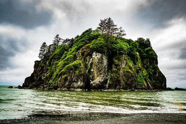 Abbey Island off Cedar Creek Bridge, Olympics National Park.