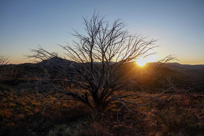 4-20-16 Scenery - Sunset - Davis Mountain SP, TX-00892