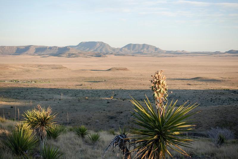 4-20-16 Scenery - Davis Mountain SP, TX-00857