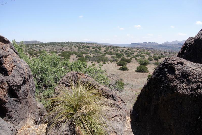 4-21-16 Scenery - Chihuahuan Desert Research Institute - Ft Davis, TX-00992