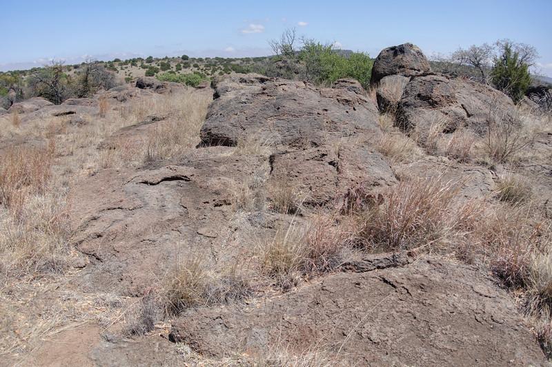 4-21-16 Scenery - Chihuahuan Desert Research Institute - Ft Davis, TX-00994