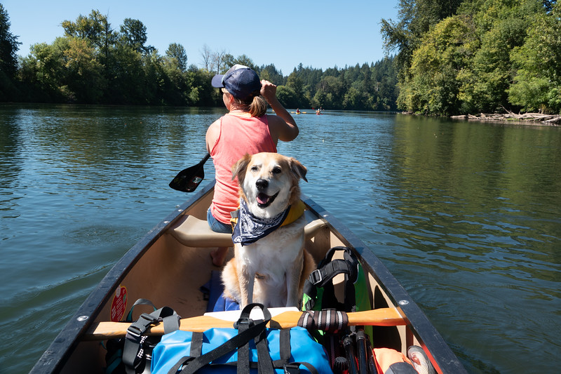 Willamette River Kayak - September 2018