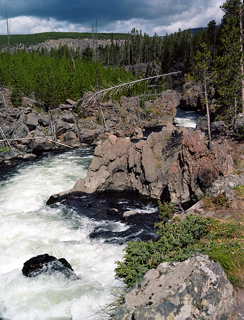 Yellowstone Rapids