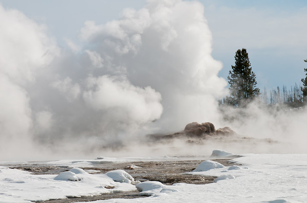 Old Faithful Steam