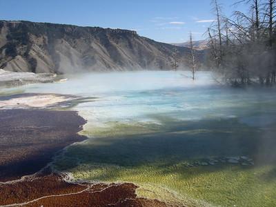 2005_10 Yellowstone