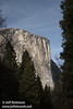 El Capitan framed by trees, seen from Bridalveil View turnout on Northside Drive. (3/28/10, Yosemite NP)
