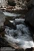 White water cascading between boulders around logs. Seen on Tenaya Creek a bit below Mirror Lake. (3/29/2010, Yosemite NP)