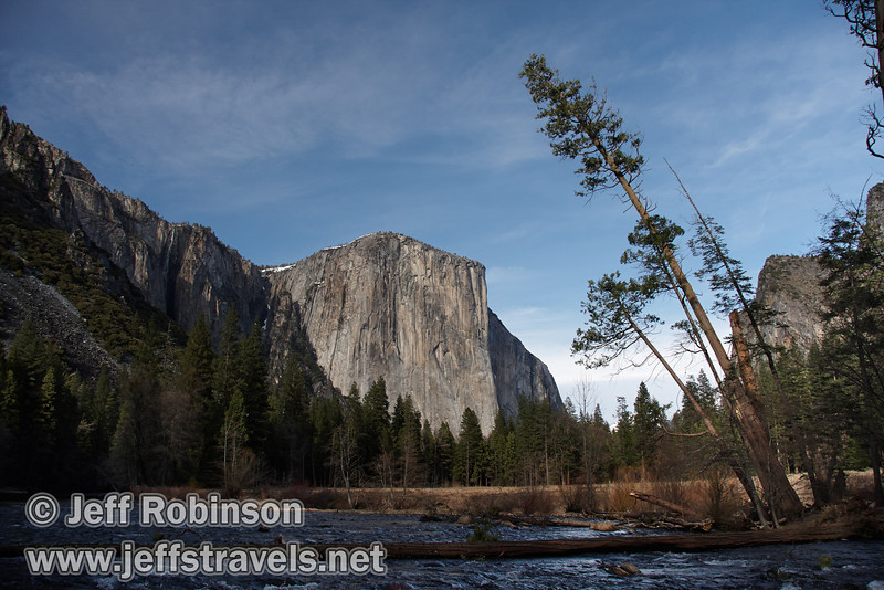 El Capitan over the Merced River (with a log across the river) framed by leaning trees. Seen from the Valley View turnout on Northside Drive. (3/28/10, Yosemite NP)