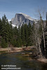 Half Dome (with some snow) and the Merced River. Seen from Sentinel Bridge. (3/28/10, Yosemite NP)