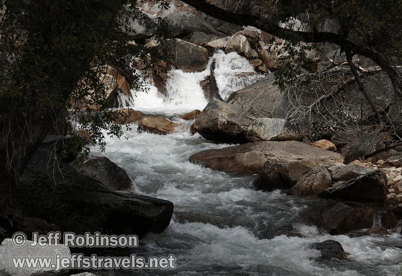 White water cascading between boulders and framed by trees. Seen on Tenaya Creek a bit below Mirror Lake. (3/29/2010, Yosemite NP)