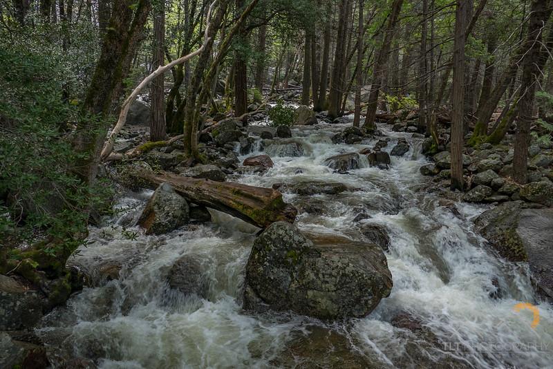 Bridalveil Creek in Yosemite.